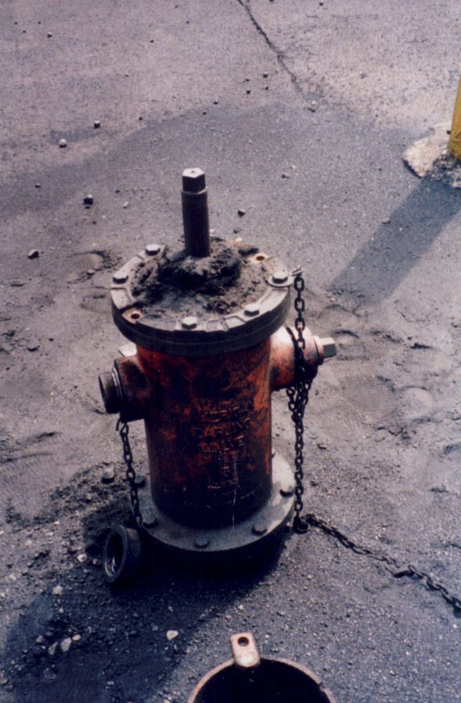 Hydrant in Need of Maintenance